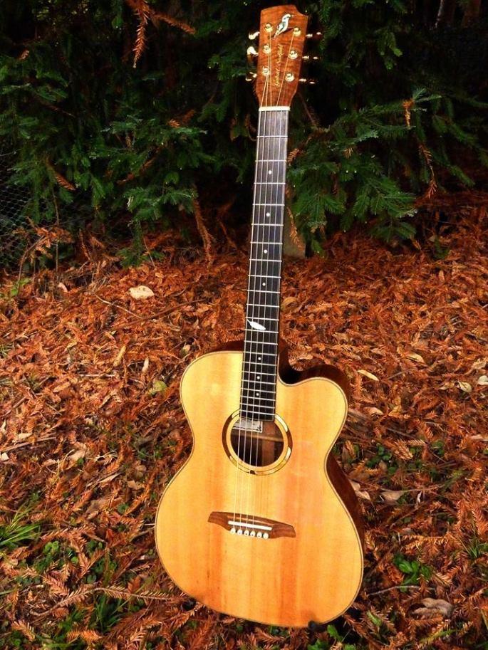 Guitar 14
